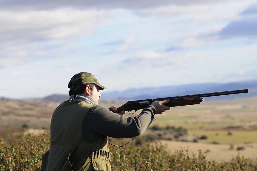 Wild game shooting in Cumbria